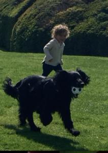Essence running in park
