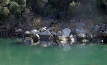 Yuba River, California - image by Sharon Gordon